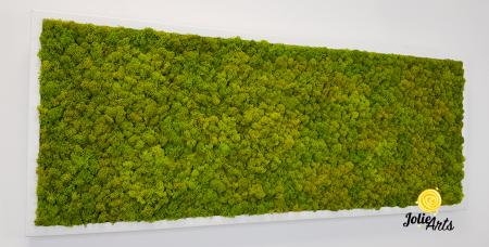 Verde Spring [4]