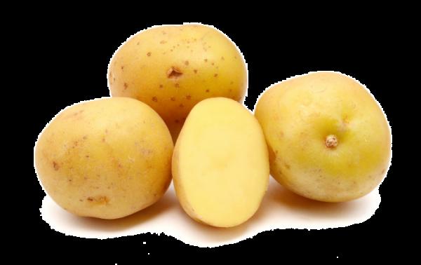 BIO Cartofi pentru cuptor - 500 Gr 0
