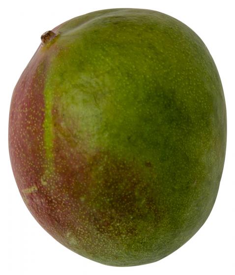 BIO Mango - 300 Gr 0