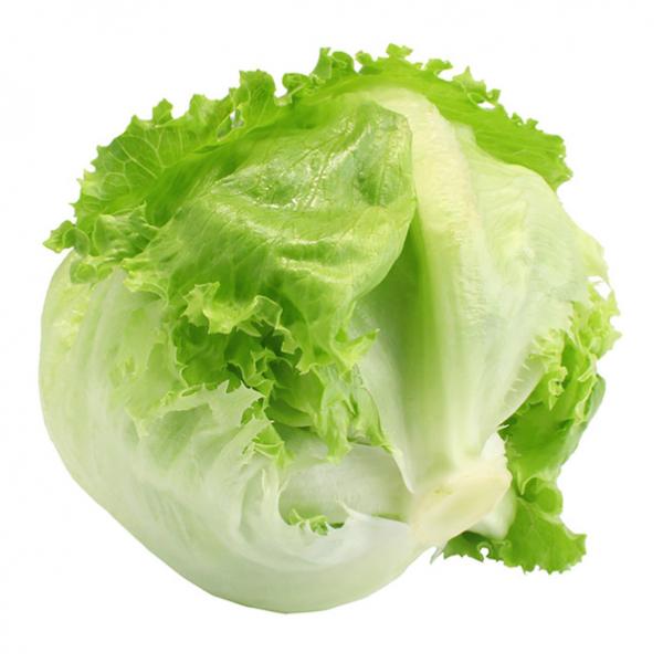 Salata iceberg 0