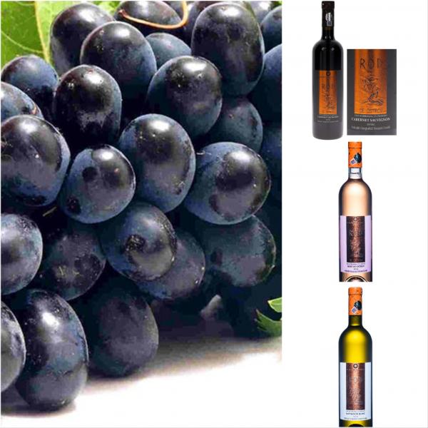 Pachet Rod Vin pentru Sarbatori 6 sticle 0