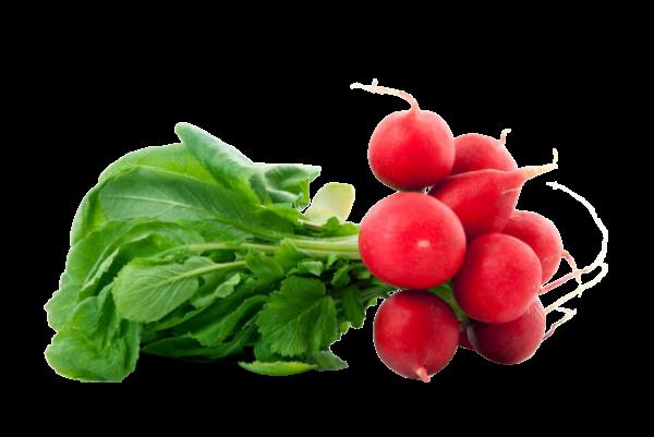 Ridichi Rosii Caserola 300 GR 0