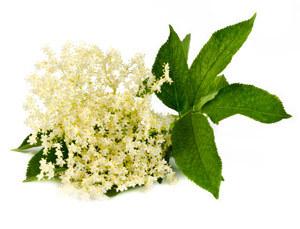 Flori de soc naturale 300 gr 0