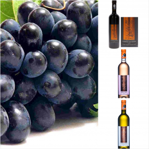 Pachet Rod Vin pentru Sarbatori 6 sticle0