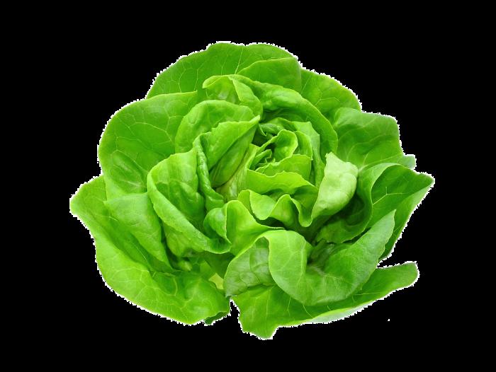 Salata verde - bucata