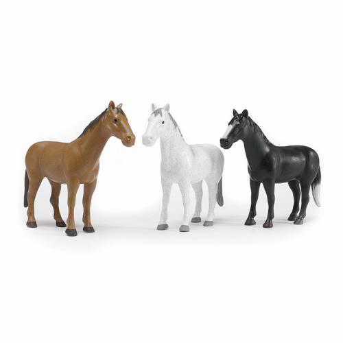 Animale & Accesorii Animale