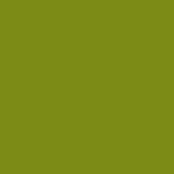 vopsea hurlimann verde [1]