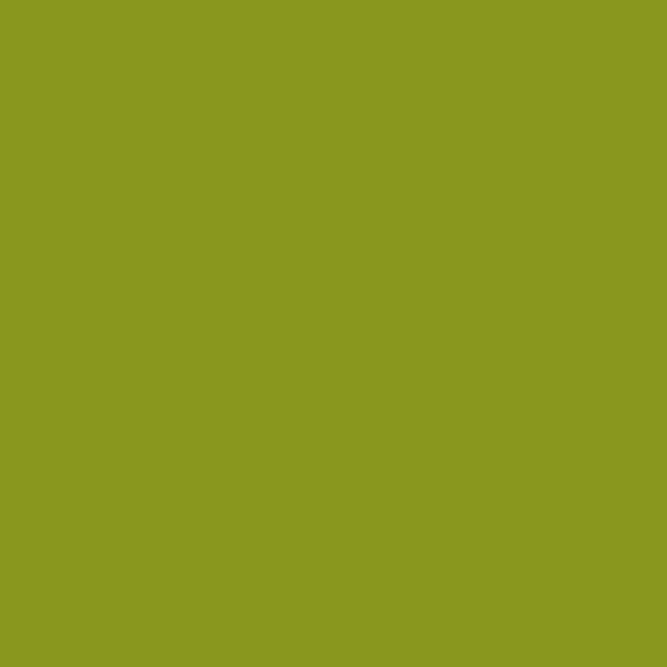 vopsea claas verde [1]