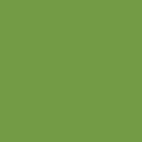 vopsea deutz-fahr verde [1]