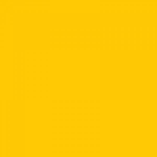 vopsea ford galben [1]