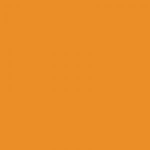 vopsea case galben [1]