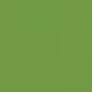 vopsea deutz verde [1]