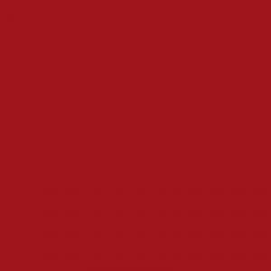 vopsea steyr rosu [1]