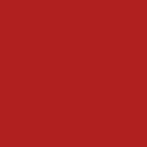 vopsea manitou rosu [1]