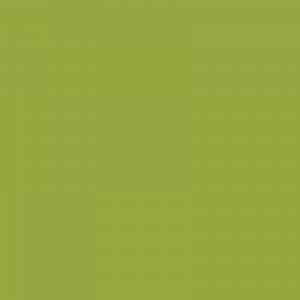 vopsea mb trac galben verzui [1]