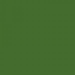 Vopsea JD Verde [1]