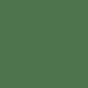 Vopsea Fendt Verde [1]