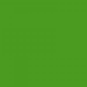 vopsea merlo verde [1]