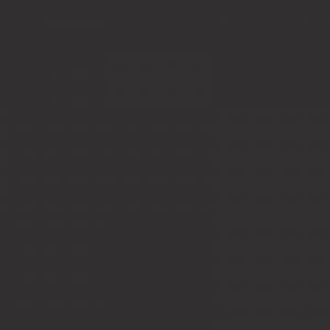 vopsea renault gri [1]