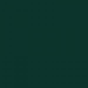 vopsea hanomag verde [1]
