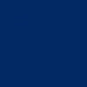 vopsea same albastru [1]