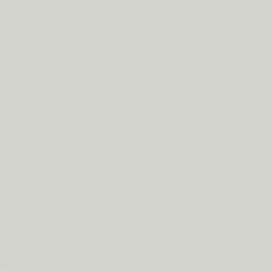 vopsea steyr alb [1]