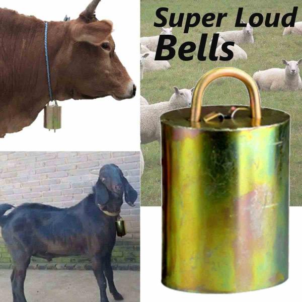 Clopot XL pentru ovine | bovine 7