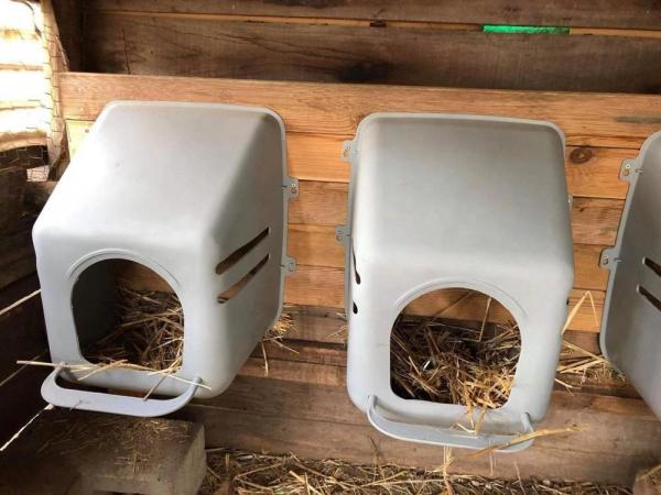 Cuib pentru găini CN01 5