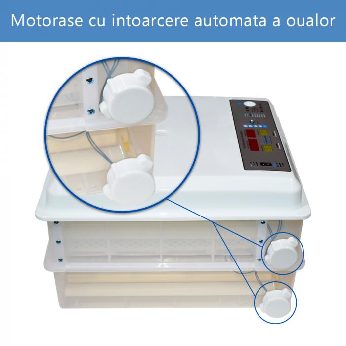 Incubator MS-98 [3]