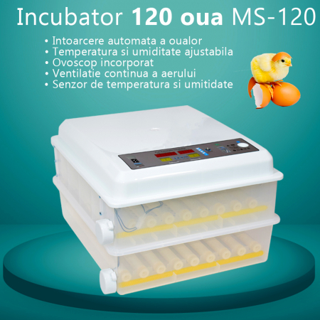 Incubator MS-98 [1]