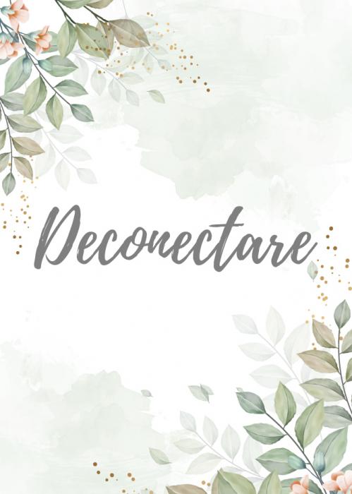 Deconectare 0