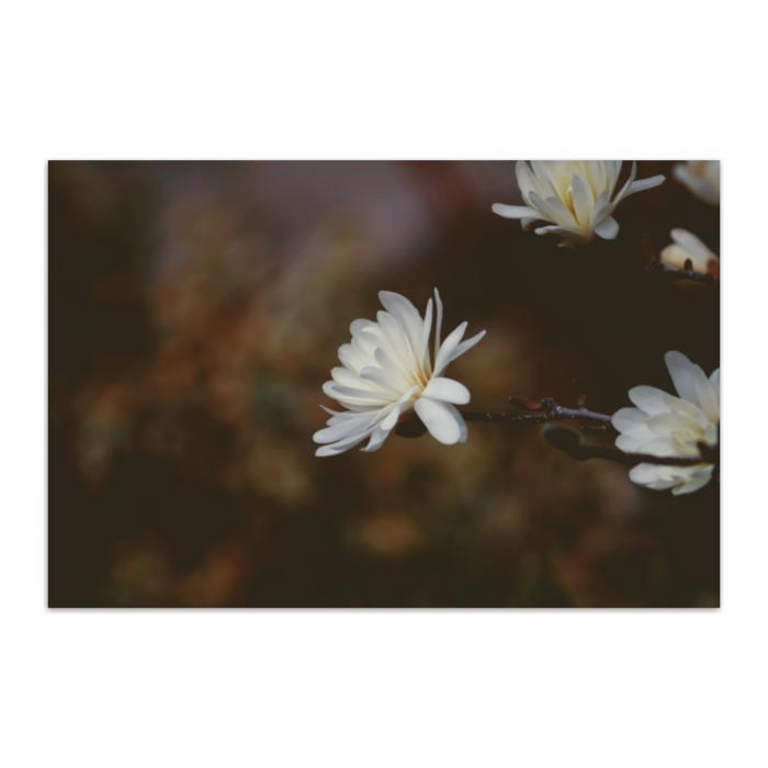 Tablou Canvas Floral Vintage, Panza, Material Textil si Bumbac, 80x50 cm, Multicolor [0]