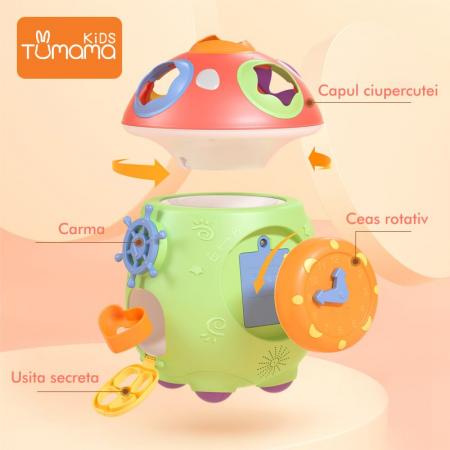 Jucarie muzicala cu sortare de forme Ciupercuta Magica, design amuzant si colorat, verde [3]