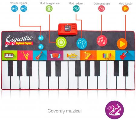 Covor muzical pian cu sunete, 24 taste, volum reglabil, 4 moduri, 181x74 cm, Smartic®, multicolor [9]