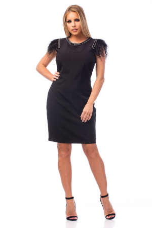 Rochie neagră cu strasuri și pene0
