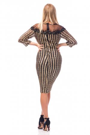 Rochie elegantă cu decolteu amplu din dantelă3