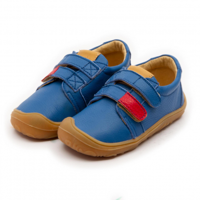 Pantofi Noah culoarea albastru, Dodo Shoes [1]