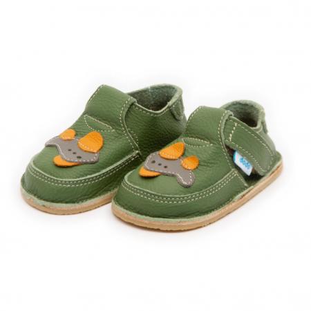 Pantofi verzi cu avion, Dodo Shoes [1]