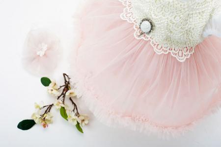 Rochie de Botez pentru Fetite, stil Printesa, roz pudra, TinTin Shop [1]
