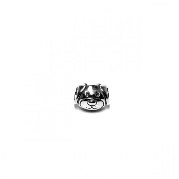 Charm argint, Caine 0