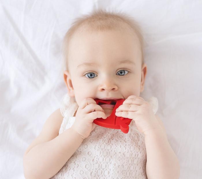 Jucarie dentitie Hevea MRB 6