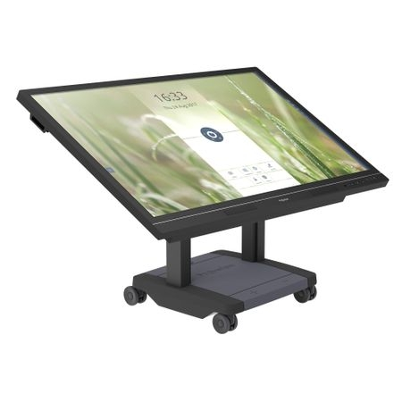 "Display Interactiv Prowise Pro Line + 65"" 0"