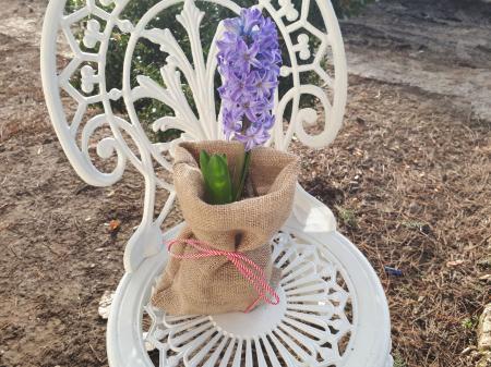 Saculet de iuta pentru ghivece de flori [0]