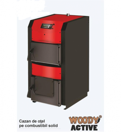 Cazan combustibil solid Woody