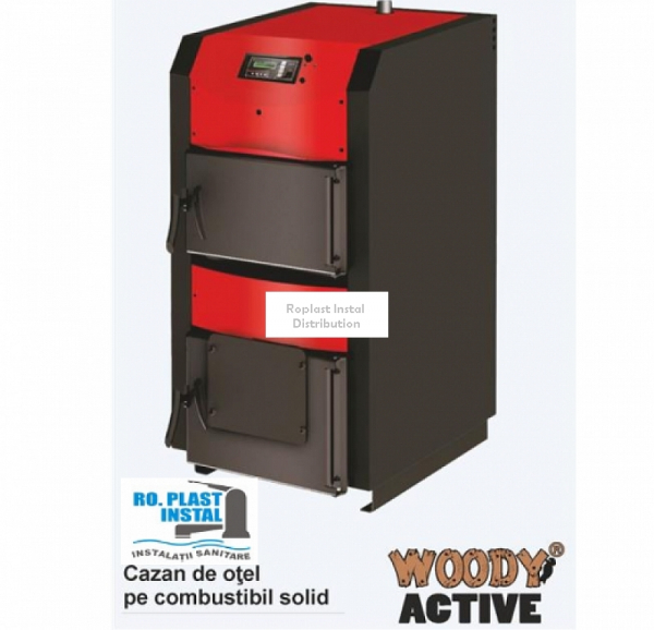 Cazan Woody Active 110 kW 0