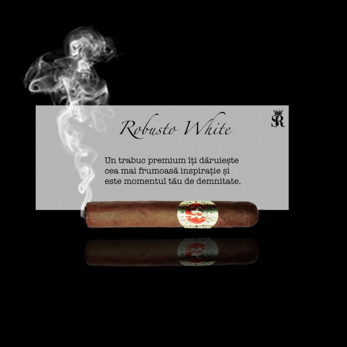 Robusto White [0]