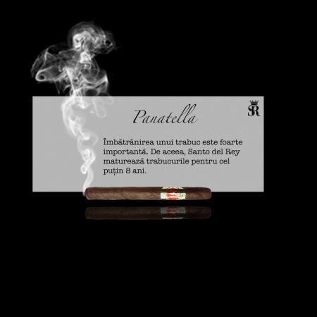 Trabuc premium Panatella [0]