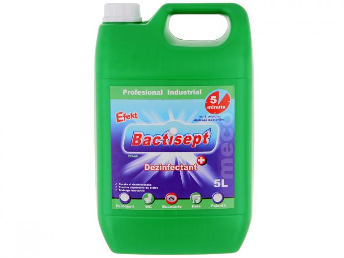EFEKT BACTISEPT - Dezinfectant pentru suprafete tari / orificii scurgere, Ambalare 5 litri 0