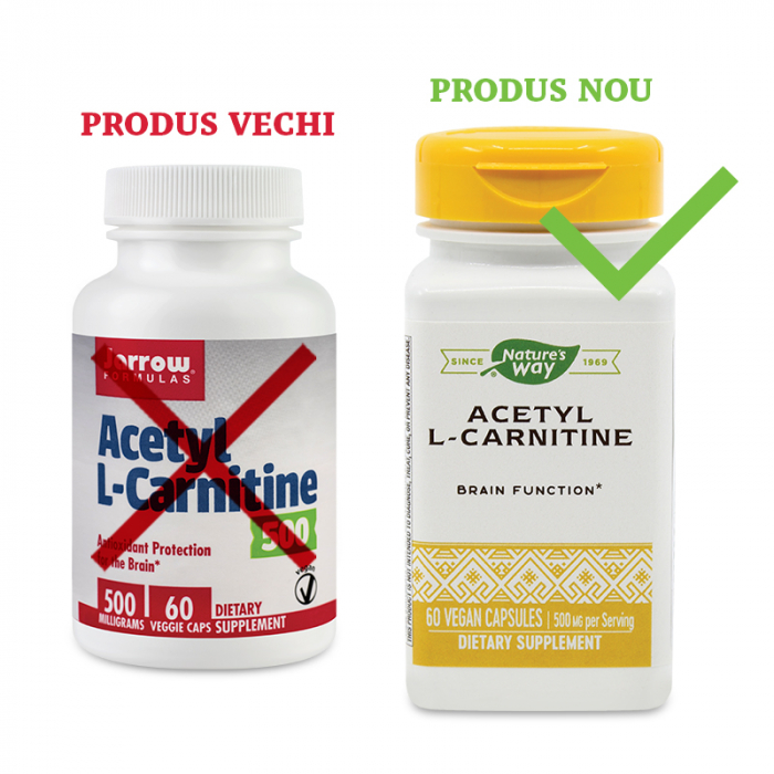 ACETYL L-CARNITINE 500 MG 60 CPS [0]