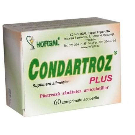 CONDARTROZ PLUS 60 CPR [0]